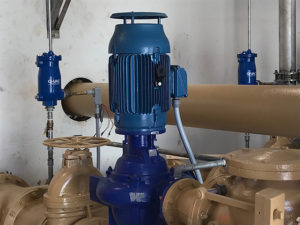 Vertical pump priming